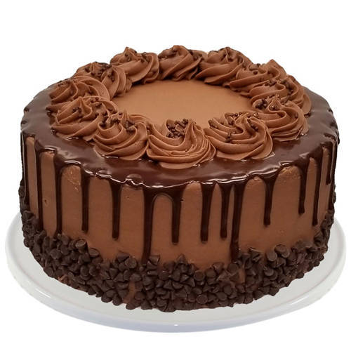 Mouth-Watering Chocolate Cake from Taj or 5 Star Hotel Bakery