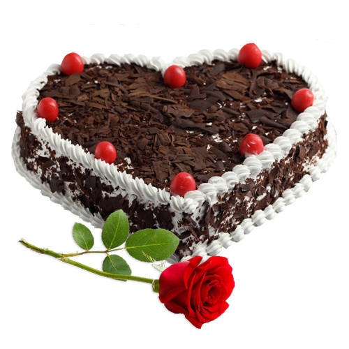 Online Combo of Black Forest Cake with Single Rose
