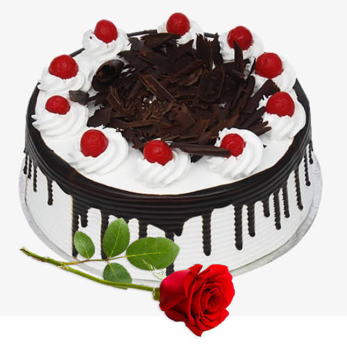 Shop Eggless Black Forest Cake with Single Rose