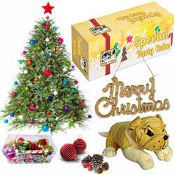 Generous Xmas Gift Combo with Hint of Joy
