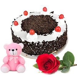 Book Black Forest Cake with Red Rose N Teddy Online