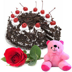 Shop Online Black Forest Cake with Red Rose N Teddy