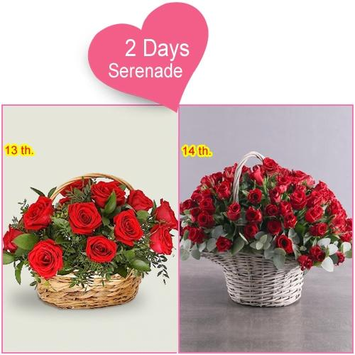 Order 2 Day Serenade Surprise for Lady Love