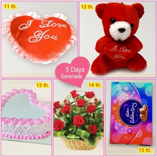 Deliver 5 Day   Serenade Gift for Love of your Life