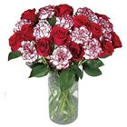 Stunning Bouquet of Carnations and Roses