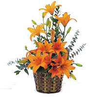 Cheerful Bouquet Of Lilies with Impressions of Love