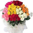 50 Mixed Colour Roses Bouquet
