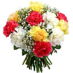 Magnetic Bunch of Mixed Carnations