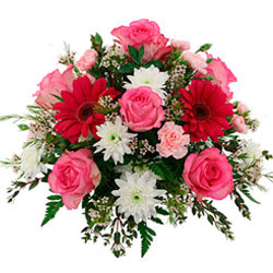 Heavenly Dozen of Pink Roses with Fruits Basket for Celebration