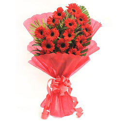 Magnificent Bunch of�Gerberas in Red Colour