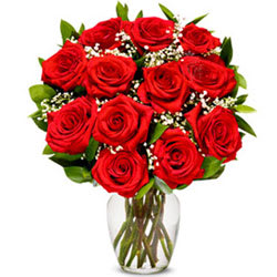 Sophisticated Red Rose Bunch in a Glass Vase