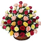 Pristine Basket of Multicoloured Roses