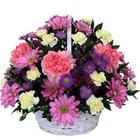 Charming Perfect Combination White and Pink Carnations and Roses Basket<br>