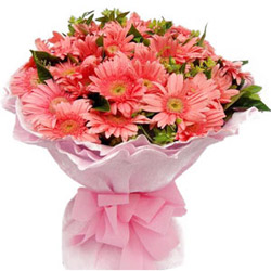 Cultivating Comeliness Gerberas Bouquet