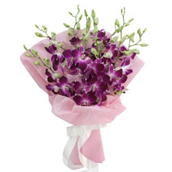 Lovely Bouquet of 10 Orchids