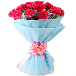 Shop for this ravishing Hand Bunch of Pink Carnations Online in tissue wrapping