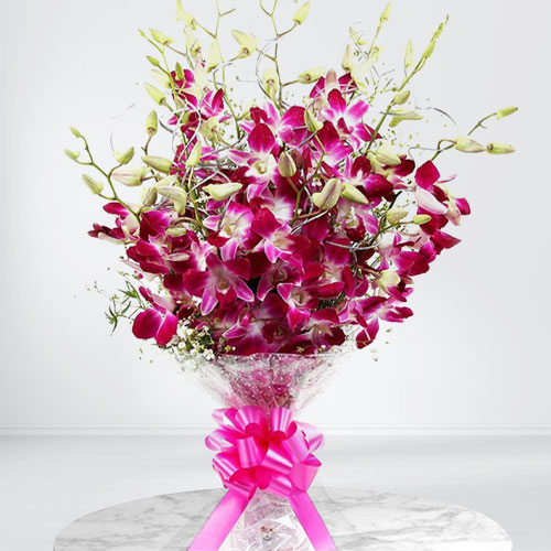 Enchanting Bouquet of Orchid Stems
