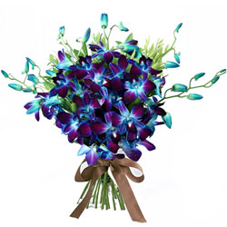 Captivating Bouquet of Blue Color Orchids