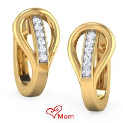 Rich Astonishment Earrings