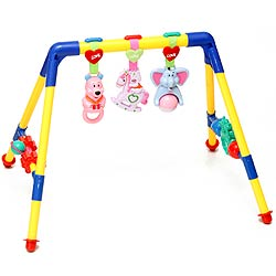 Fun Gym for Baby