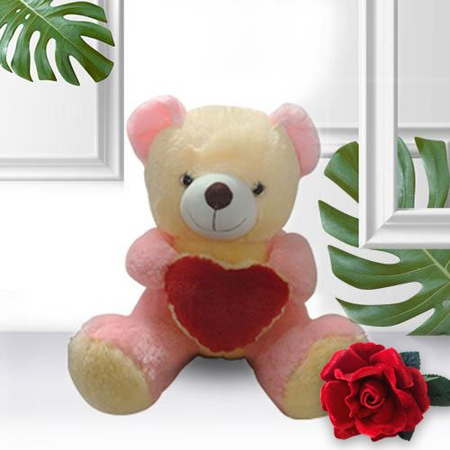 Order Combo of Red Roses, Teddy N Coocolates for Teddy Day