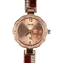 Dreamy Present of Two Tone Ladies Wrist Watch