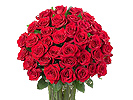 Send Fresh Flowers to Ooty