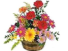 Send Fresh Flowers to Mahabalipuram