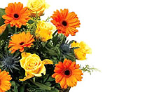 Send Gifts and Flowers to Mettupalayam