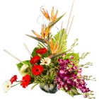 Special Arrangement of Exotic Flowers  to Chennai.