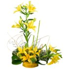 Special Arrangement of  5 Stem Yellow Lilies to Chennai.