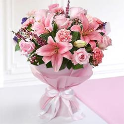 Send Flower to Egmore