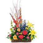 Send Flower to Rayapuram Market