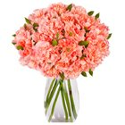 Send Flowers to Chennai