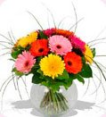 Send Flowers to all over Channai, Tamil Nadu