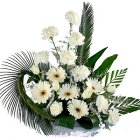 Special Arrangement of White Flowers to Chennai.